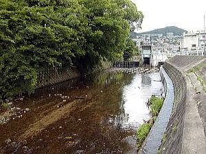http://agua.jpn.org/yodo/kanzaki/saimyoji7.jpg